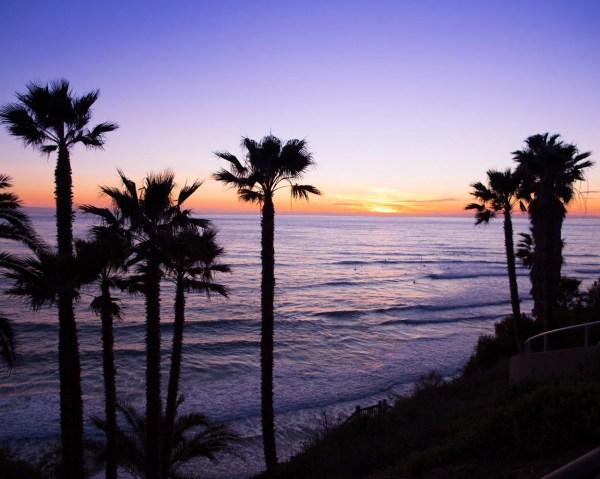 San Diego Beach Swami Landscape
