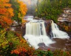 Color Photography - Landscape - Wall Art - Decor - Blackwater Falls II