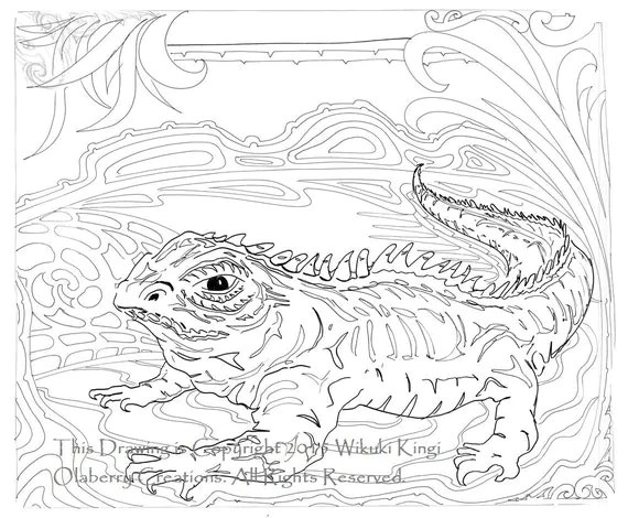 Tuatara Reptile Digital Design / Coloring Page Large A3