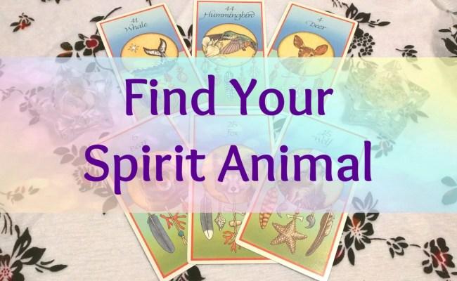 Find Your Spirit Animal Reading By Moodythursday On Etsy