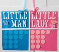 Gender reveal party decor Gender reveal decorations Gender
