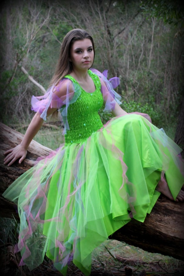 Adult Tulle Tinkerbell Fairy Costume Halloween