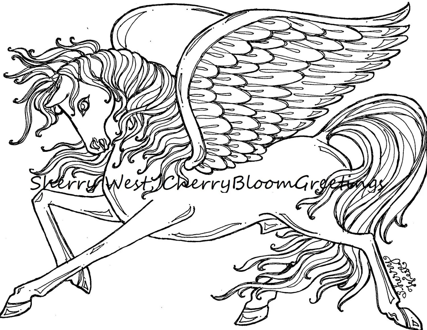 1 Pegasus Winged Horse Adult Coloring Page Sherry West Drawing