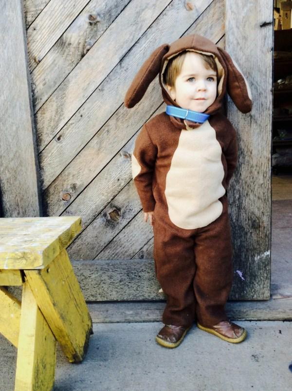 Puppy Dog Halloween Kids Costume Boys Girls Toddler