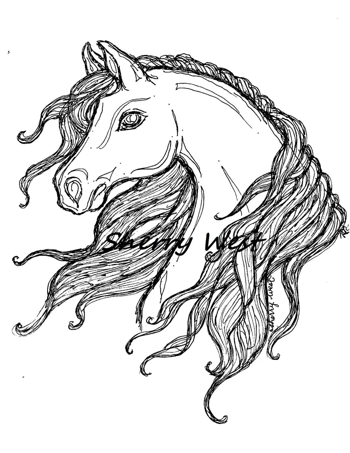 1 Alluring Arabian Horse Sherry West Coloring Page Doodle Clip