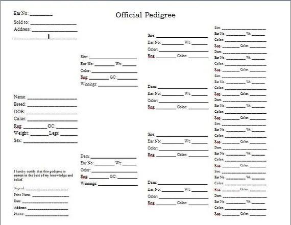 Items similar to Rabbitry 10 Blank Rabbit Pedigree Forms
