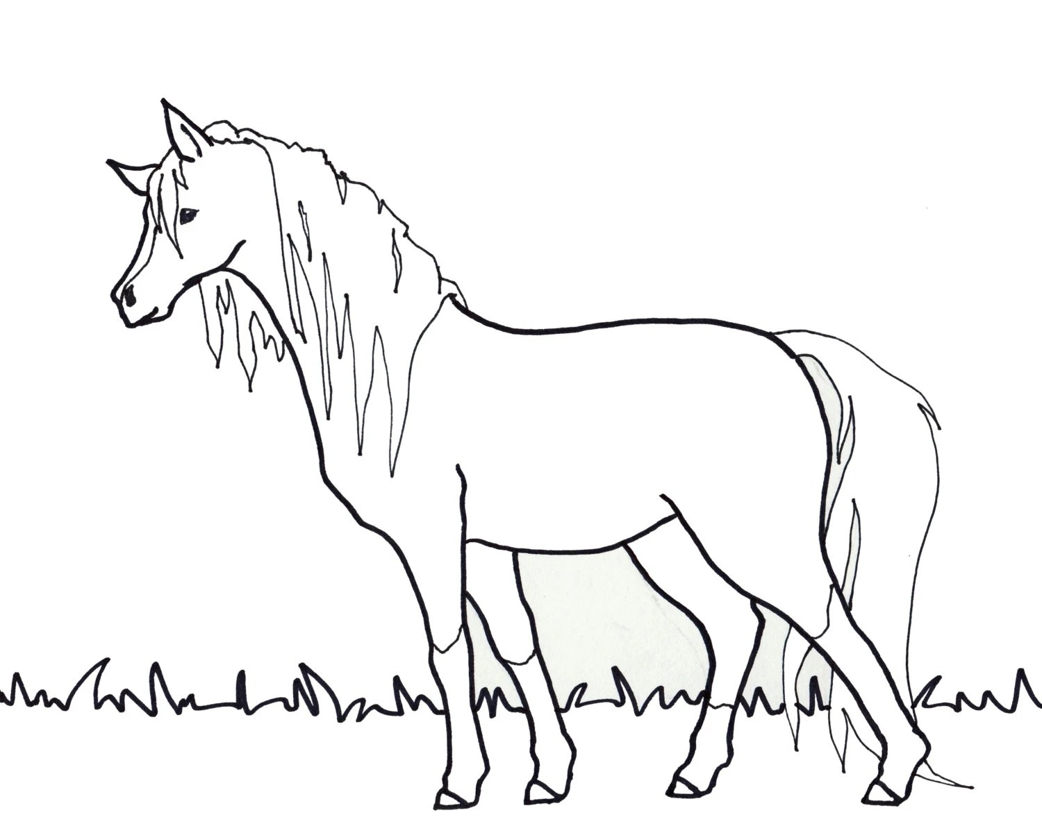 Coloring Page: Horse Adult or Children 8x10 by DrawMonkeyArt