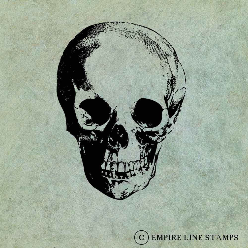 Skull #2 LARGE - Antique ...
