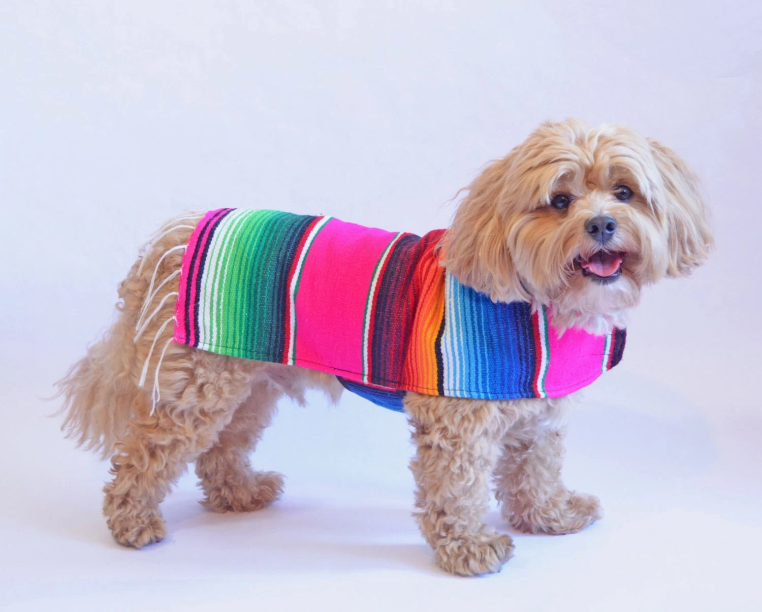 Dog Clothes Pink Handmade Dog Apparel From by BajaPonchos