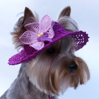 Hat for dog Orchid Dog Sun Hats Party Hats For