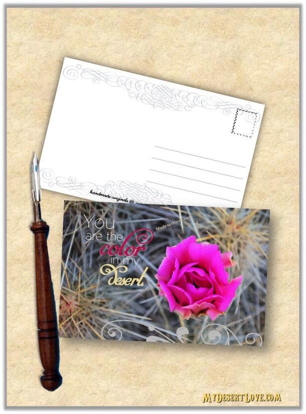 Pink Cactus Flower Valent...