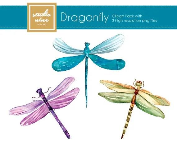 dragonfly clipart set studioninedigitalart