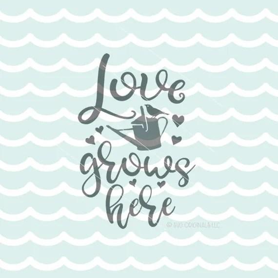 Download Love Grows Here SVG Vector File. Cricut Explore & more ...