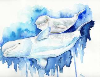 beluga whale baby painting watercolor cute mama nursery whales mother description