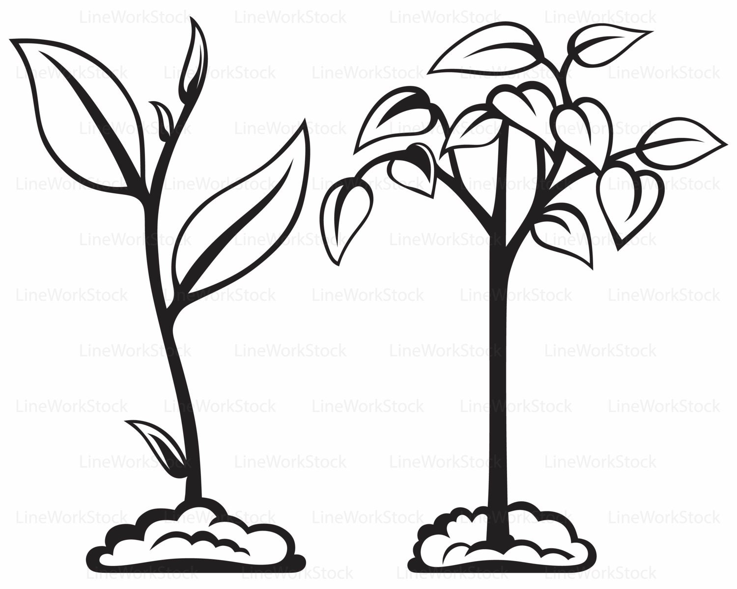 Plant Svg Leaves Clipart Plant Svg Plant Silhouette Leaf