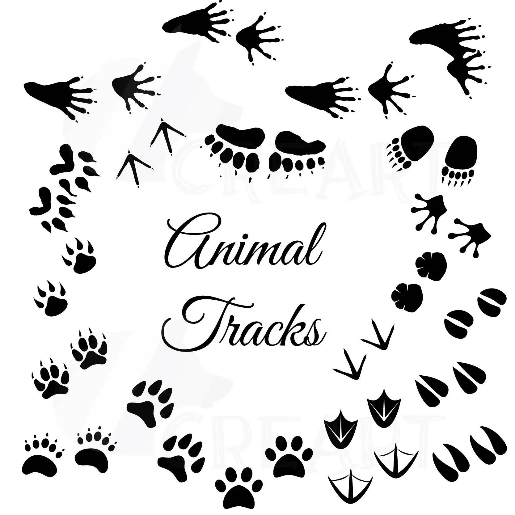 Animal Tracks, Woodland Animals footprints Clipart pack