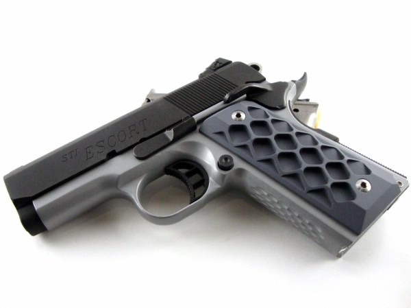 Kimber 1911 Grips - Year of Clean Water