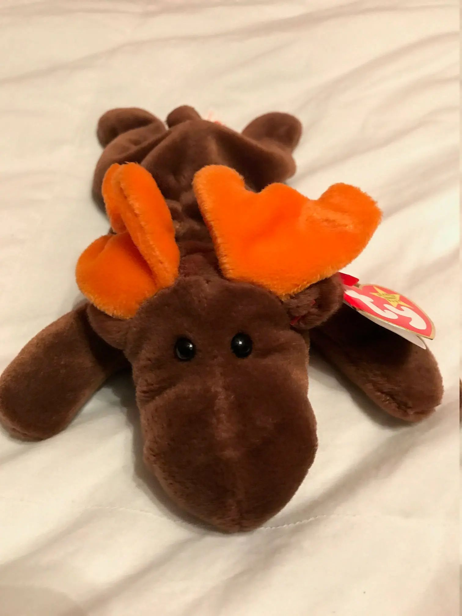 moose baby toys