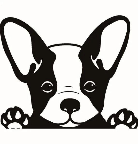 Download French Bulldog #1 Dog Breed K-9 Animal Pet Puppy Paws ...