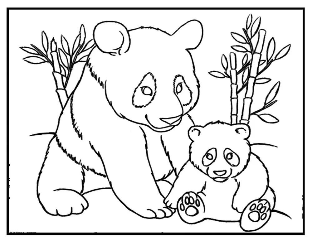 Panda coloring sheet Panda coloring page panda printable
