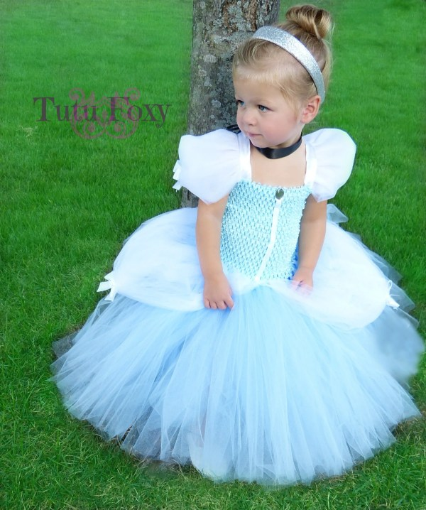Cinderella Tutu Dress Costume