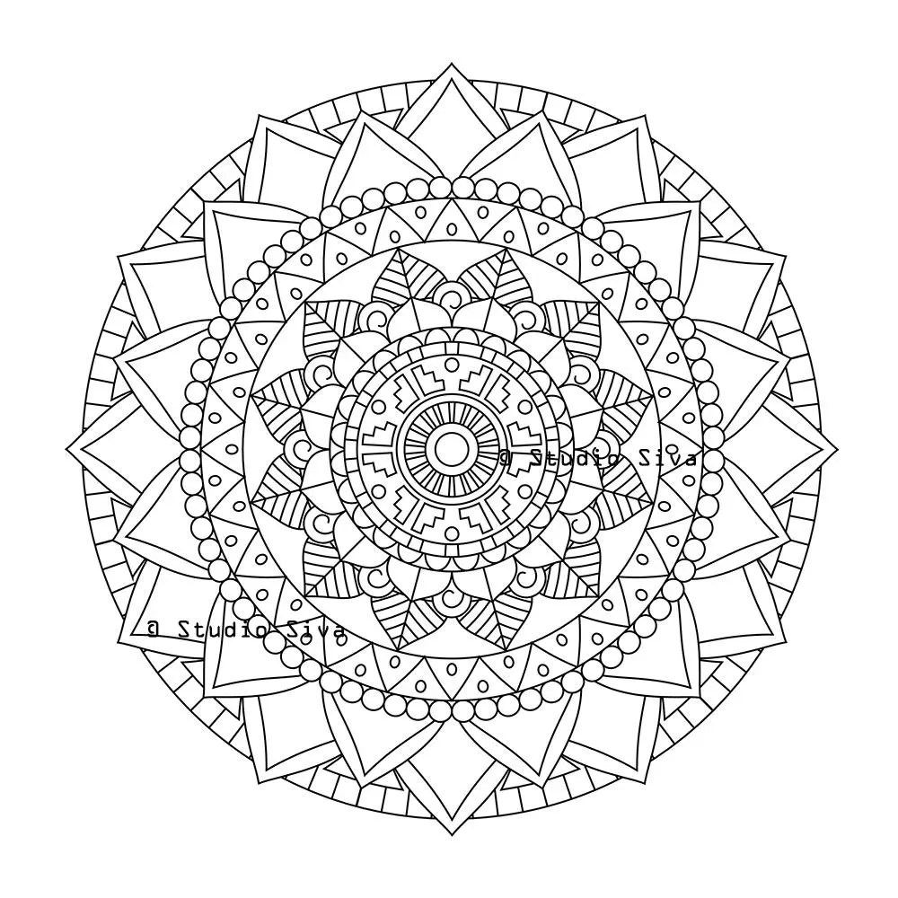 Flower Bloom Tribal Mandala Coloring Page / Instant Download
