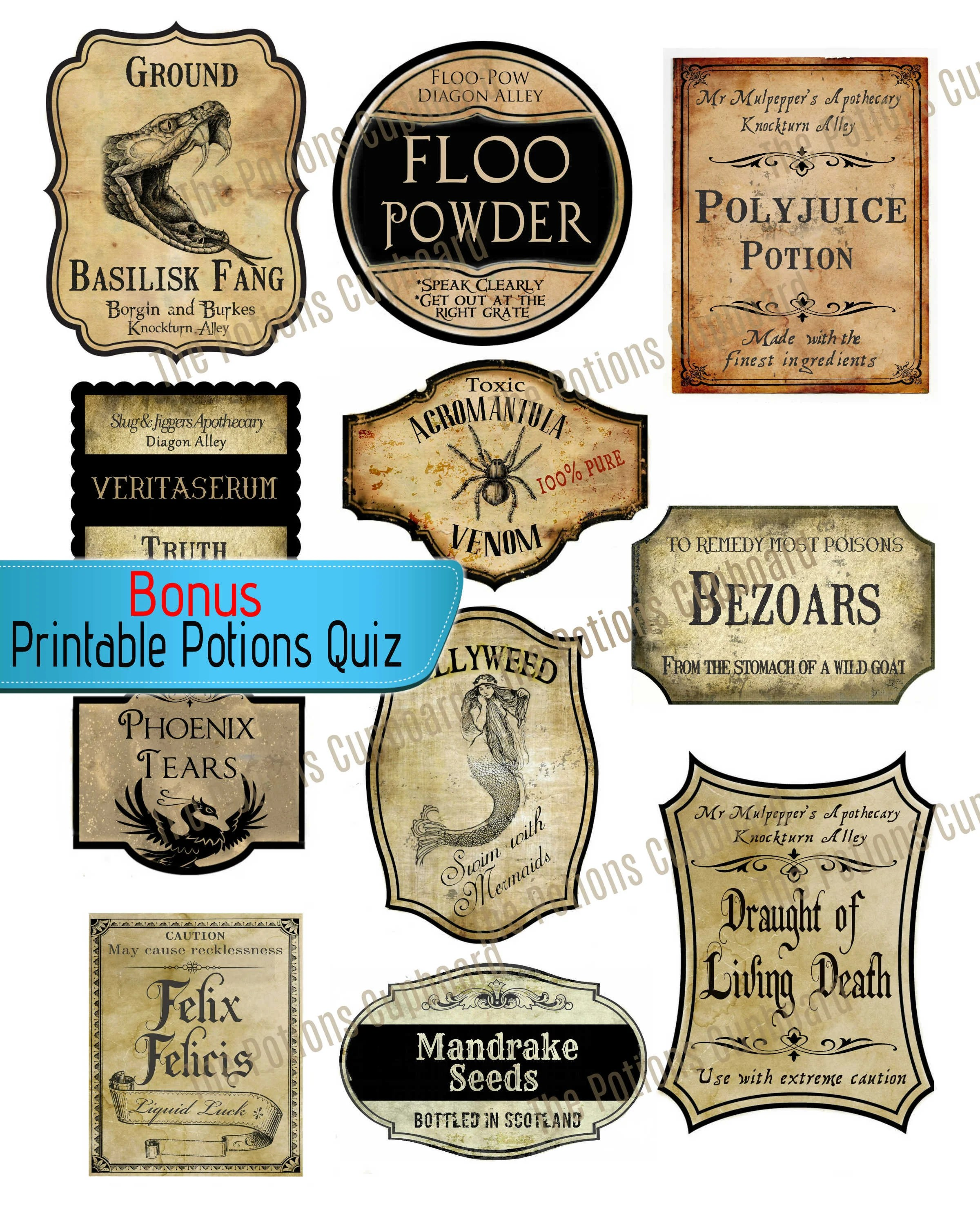 Realistic Harry Potter Potion Labels Wizard Jars Party
