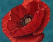 Red Poppy 8x8 Acrylic Pai...