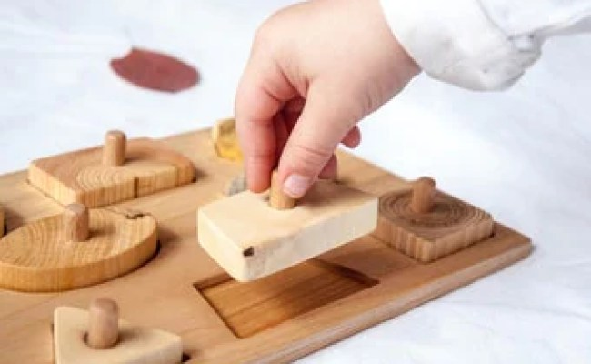 Basic Shapes Wooden Puzzle An Educational Solid Wood Toy For