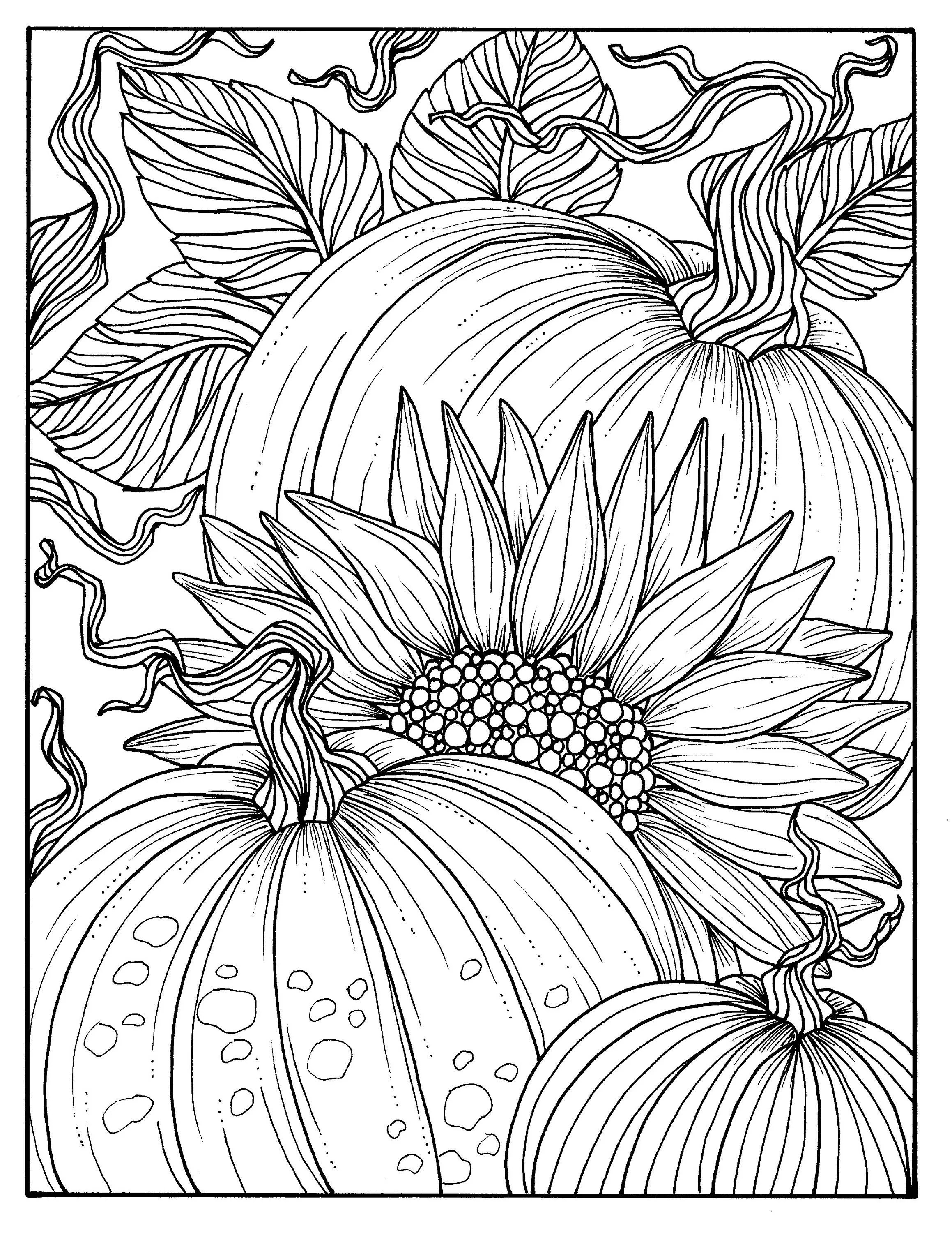 5 Pages Fabulous Fall Digital Downloads To Color Punpkins