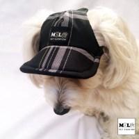Plaid Dog Hat Dog Cap Dog Baseball HatDog Visor Dog