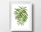 Tropical leaf print. Palm...