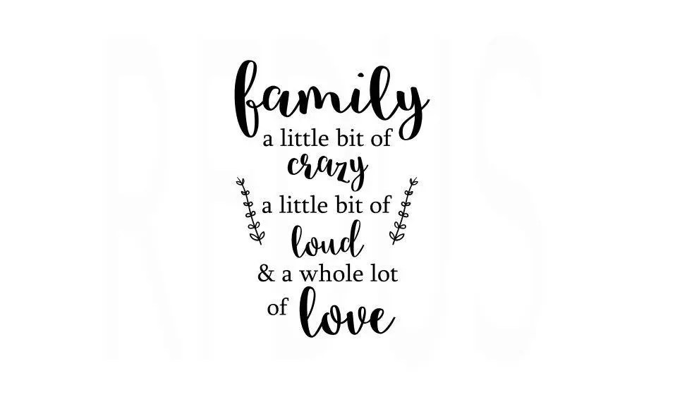 Family A little Bit Of Crazy A little Bit of Loud and a whole