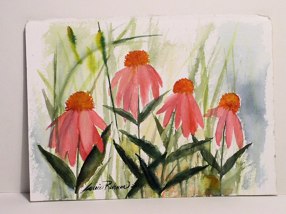 Original Watercolor Bright Pink Coneflowers on Quality Paper Not a Print.