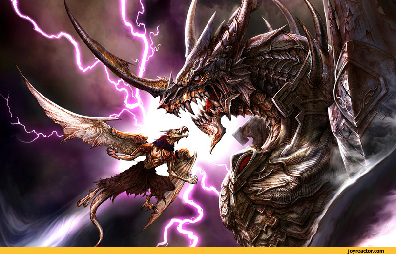 fight  fantasy  dragon  art beautiful pictures