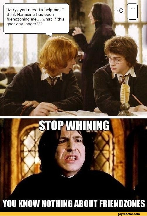 snape funny pictures and jokes  funny pictures  best