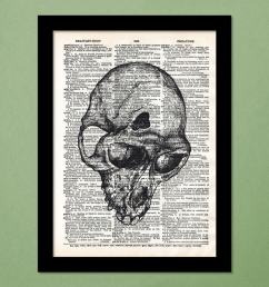 buy fractured monkey skull wall hanging art print by engrave for unisex from engrave for 1499 at 50 off 2019 limeroad com [ 830 x 1102 Pixel ]
