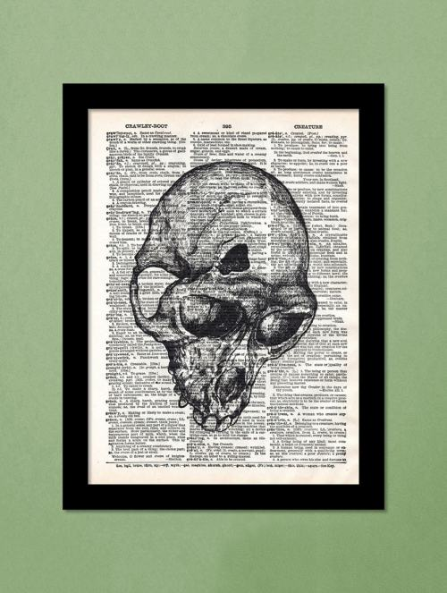 small resolution of buy fractured monkey skull wall hanging art print by engrave for unisex from engrave for 1499 at 50 off 2019 limeroad com