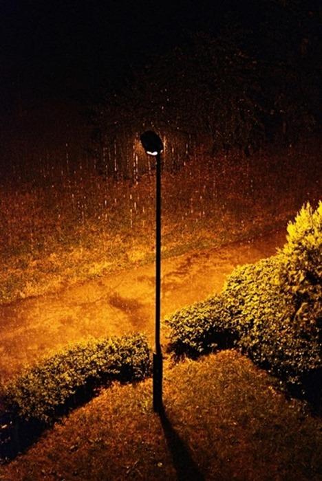 Как снимать фотографии с дождем. Примеры для вдохновения