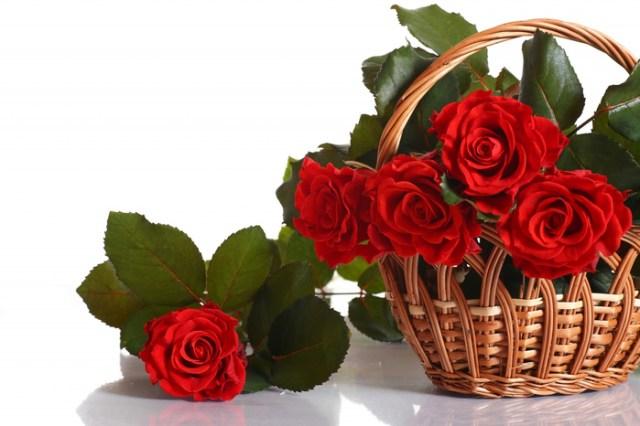 цветы и корзина 5 (700x466, 304Kb)