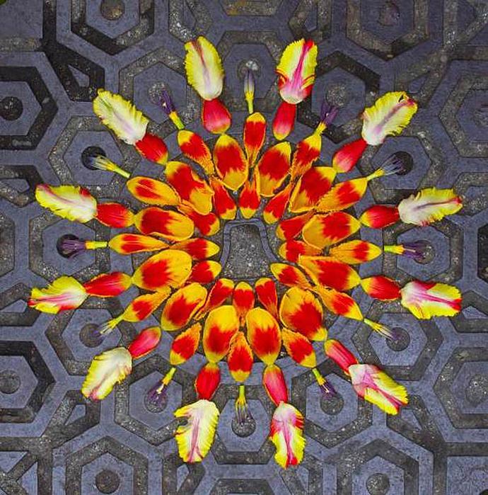 цветочные мандалы фото 8 (690x700, 235Kb)