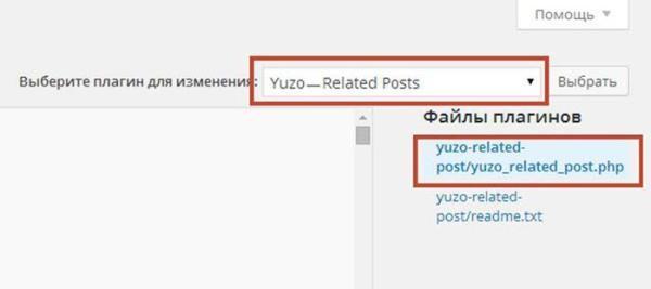 После обновления плагина Yuzo   Related Posts появляется ненужный код