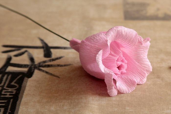 розы из гофрированной бумаги. мастер-класс (15) (699x466, 78Kb)