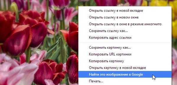 Как легко найти похожие картинки в браузере Google Chrome