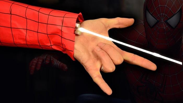 Из чего сделана паутина? Как она устроена