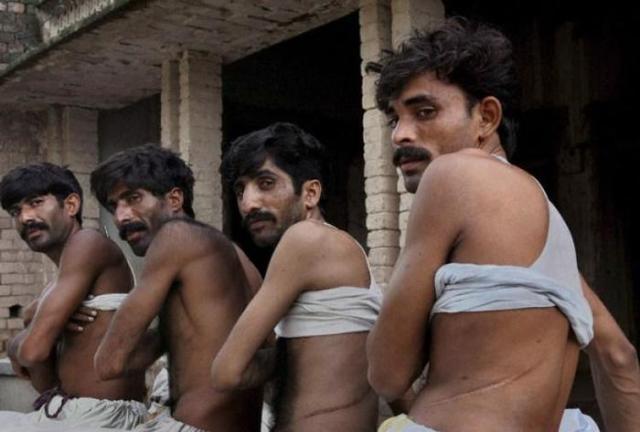 Интересные факты о современном рабстве
