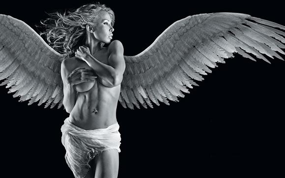 Крылья необходимы птицам, чтобы летать?