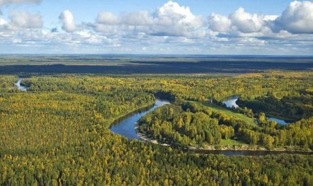 Сколько в Сибири находится природных богатств