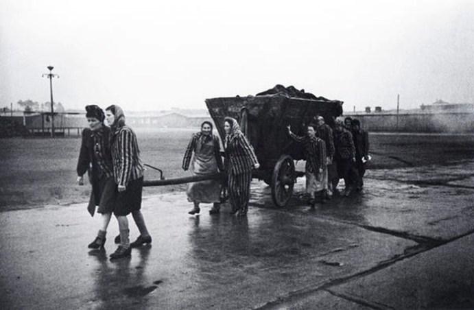 Как жила Европа, оккупированная Гитлером