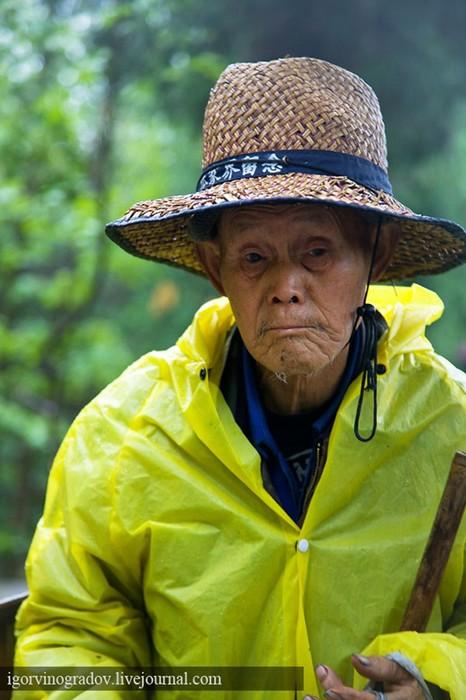 Планета Пандора— реальна! Горы в парке Чжанцзяцзe (Китай)